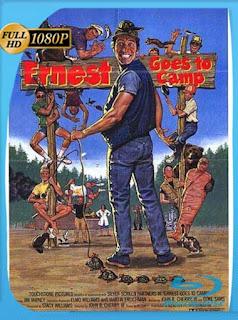 Ernest Goes To Camp (1987) HD [1080p] Latino [GoogleDrive] SilvestreHD