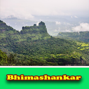 bhimashankar tour from pune