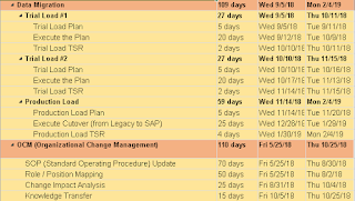 Data Migration and Change Management SAP Project Plan
