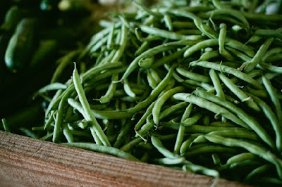 The common green bean was designed by the Master Engineer to respond to injury.