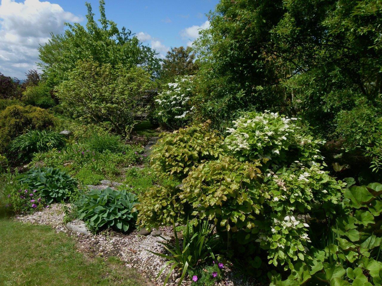 Le blog de parcs et jardins de l 39 oise visite pjo du for Jardin 7 17