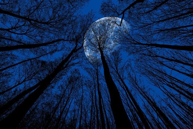 ¿Cómo afectarán las próximas lunas azules a los signos del zodíaco?