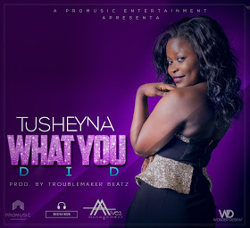 BAIXAR MP3 || Tusheyna - What You Did [Prod By Troublemaker beatz] || 2018