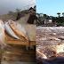 Operação Piracema da Polícia Ambiental aplica mais de R$ 7 mil em multas e apreende 11 kg de peixe