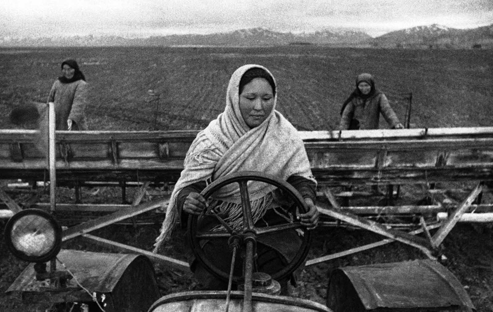 Young Soviet girl tractor-drivers of Kirghizia (now Kyrgyzstan), efficiently replace their friends, brothers and fathers who went to the front. Here, a girl tractor driver sows sugar beets on August 26, 1942.