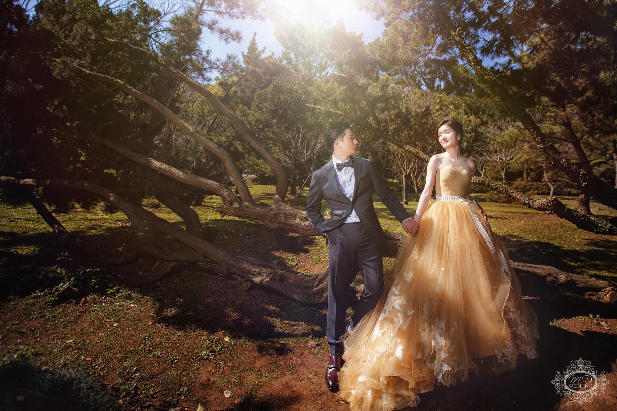 國內婚紗 浪漫風格 海邊夕陽婚紗 陽明山 逆光婚紗 台北婚紗推薦