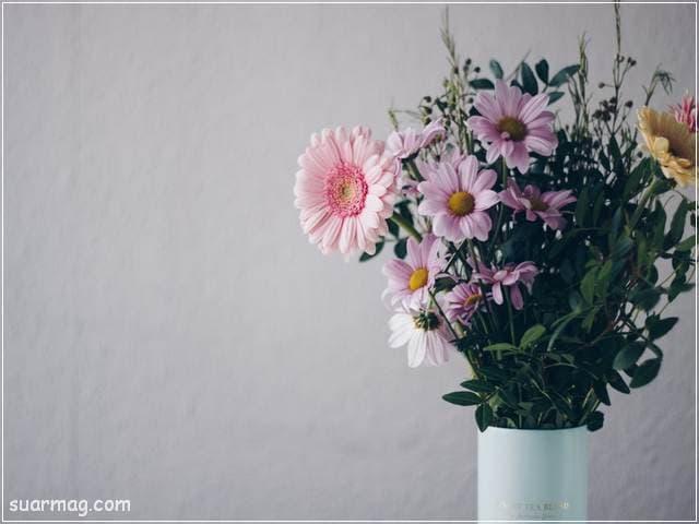 صور بوكيه ورد 6 | Flowers Bouquet photos 6