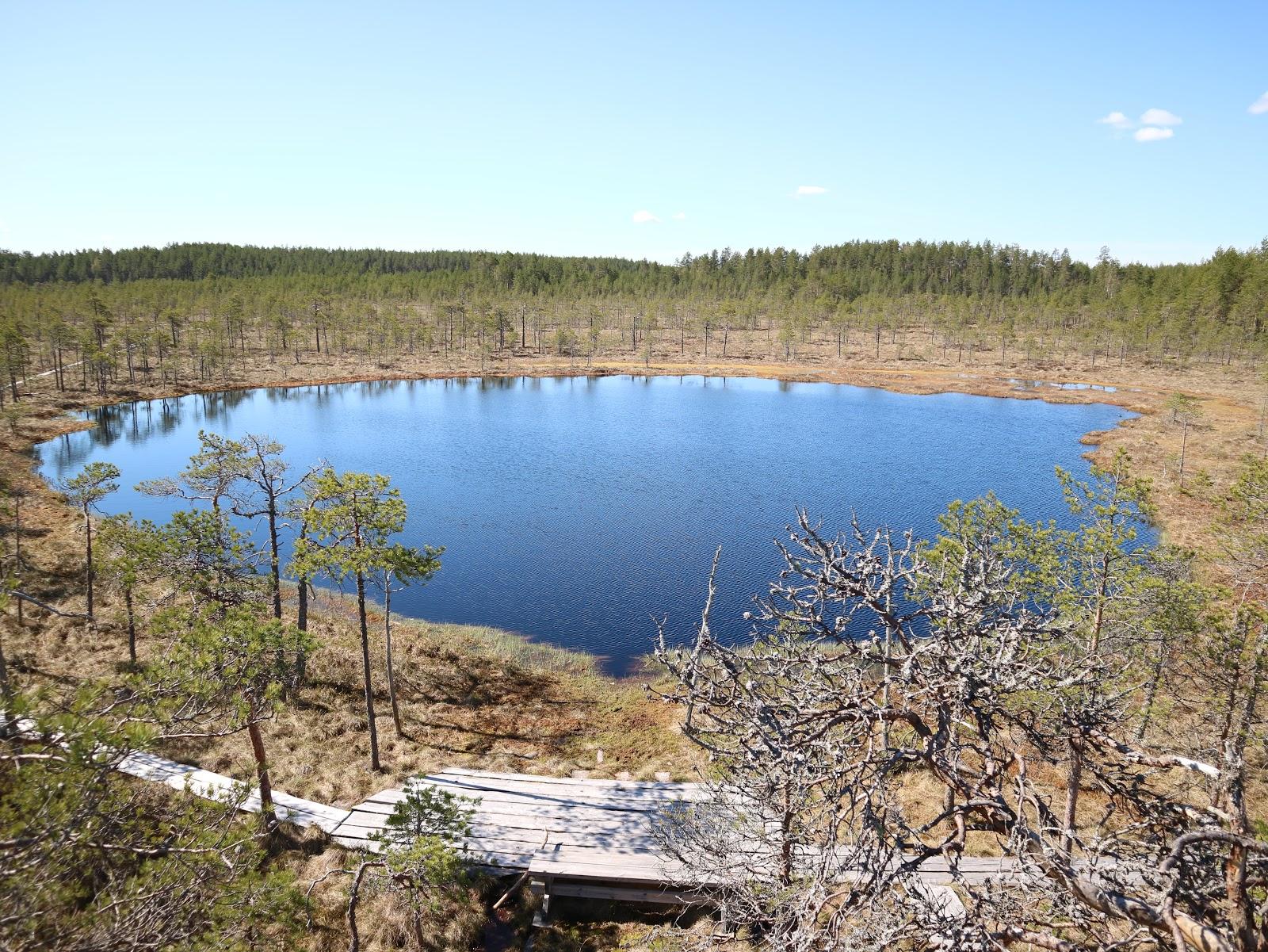 Leivonmäen Kansallispuisto