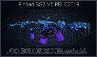 Pindad SS2 V5 PBLC2019