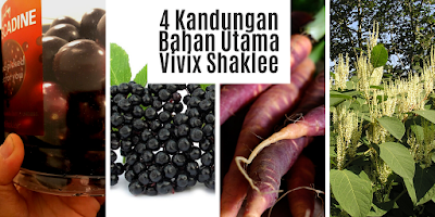 4 Kandungan Bahan Utama Vivix Shaklee
