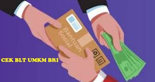 Cara cek data anda apakah terdaftar di program bantuan BLT BPUM BRI tahap 2