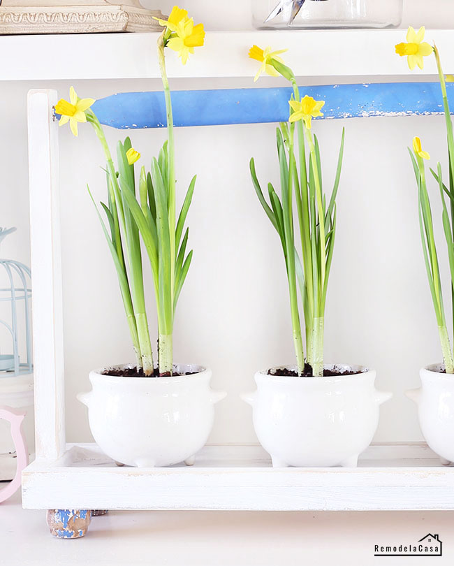 Spring is in the air - home decor with yellow tulips on tray