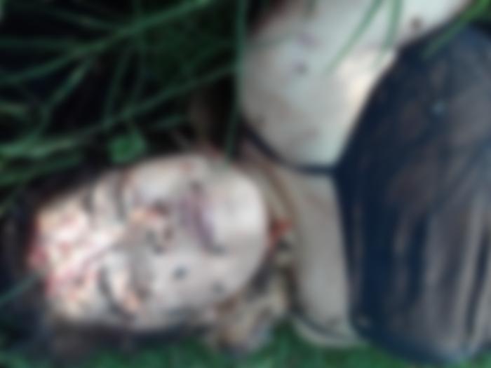 Por Sapo, En Culiacan ejecutan a mujer y le amarran dos Sapos en el cuello