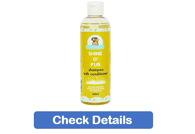 best dog shampoo, Golden Retriever dog shampoo, best shampoo for puppies