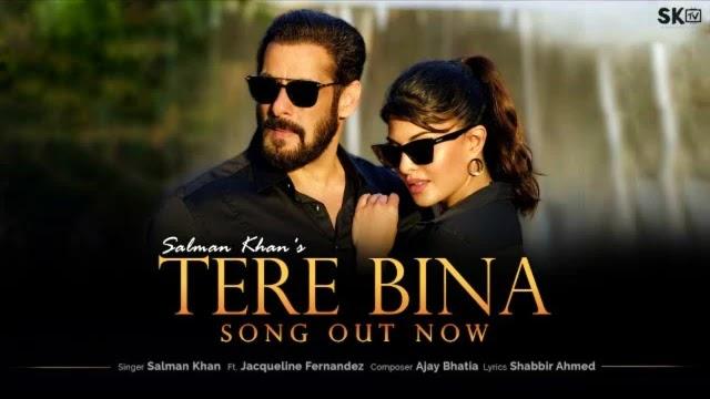 Tere Bina Lyrics   Salman Khan   Jacqueline Fernandez