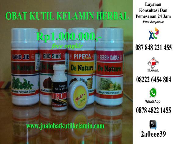 Obat Kutil Kelamin Alternatif