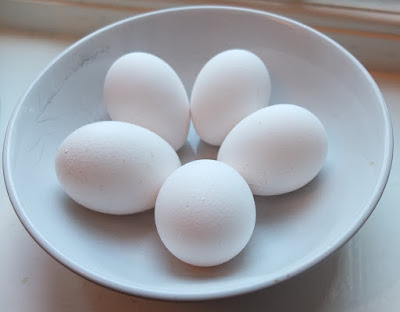 protein value of egg