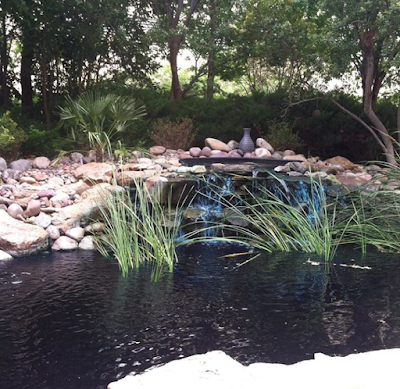Tarrant County College Northwest campus pond - photo by Amber the Blonde Writer