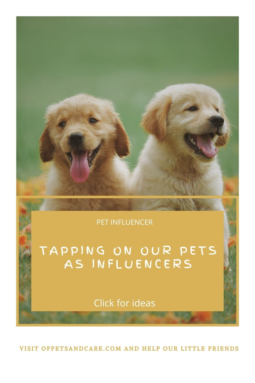 Tapping on our Pets as Influencers, puppies