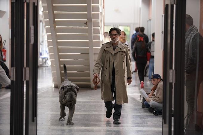 'Meu Cachorro e Eu': comédia francesa de Yvan Attal chega às plataformas digitais