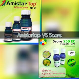 amistartop