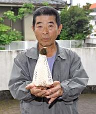 キノコの女王キヌガサタケ発見!