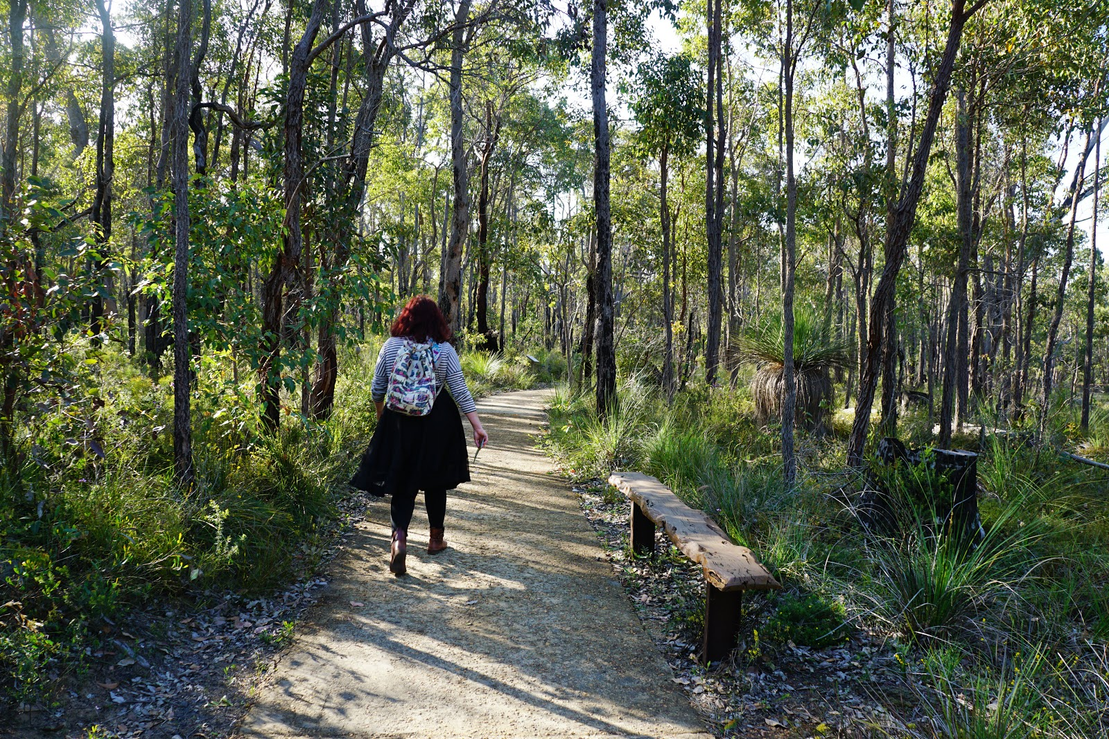 Jarrah Walk Amp Forest Path Crooked Brook Forest The