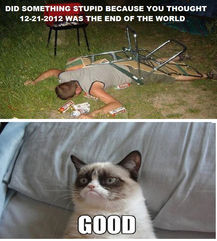 Grumpy Cat Friday Pictures