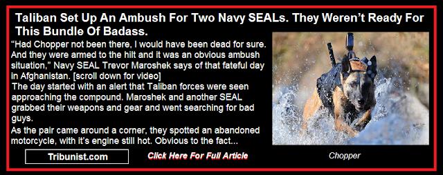 Taliban Set Up An Ambush For Two Navy SEALs