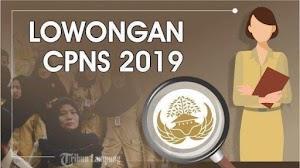 Kuota CPNS 2019 dan PPPK 2019 Seluruh Indonesia TERKUAK!