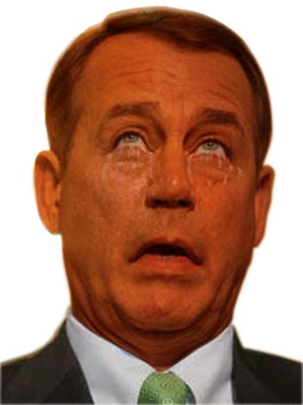 Image result for orange boehner