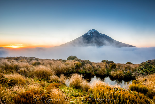 mount taranaki dawn tussock cloud