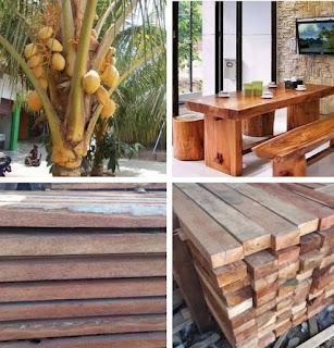 Kelebihan dan kekurangan kayu kelapa untuk furniture
