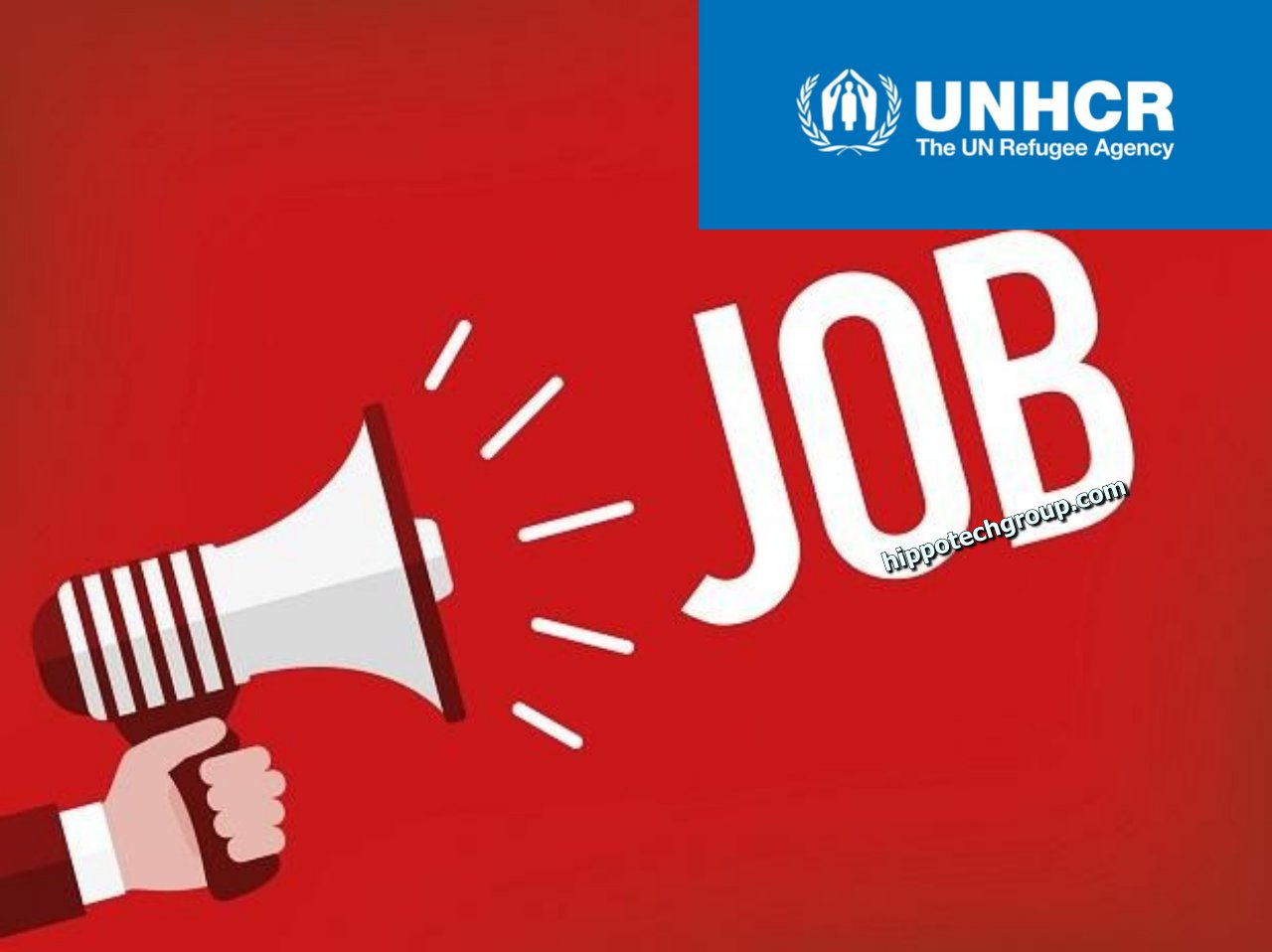 UNHCR Needs the Services of a Head of Field Unit