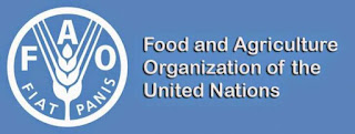 FAO-Pakistan-Jobs-2020-for-and-Tenure-Specialist