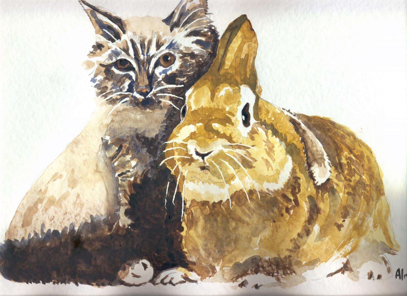 Plumes rimes le chat et le lapin - 4 images 1 mot poussin lapin ...