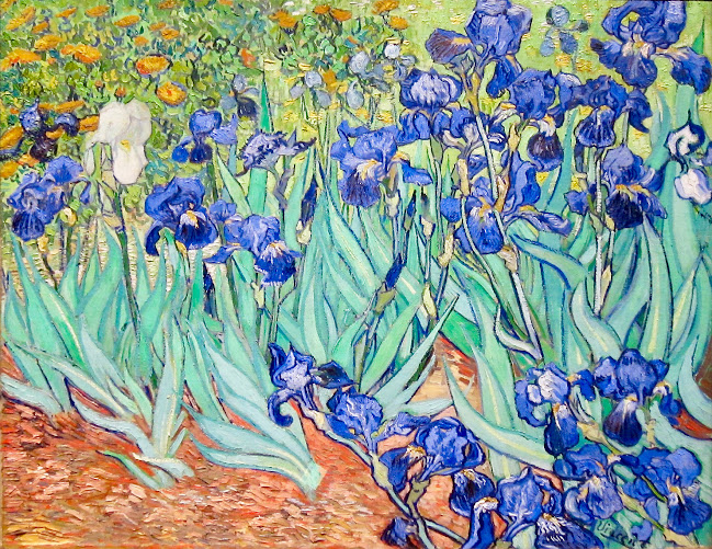 An image of Irises by Vincent Van Gogh