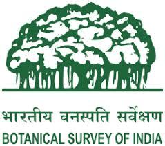 BSI 2020 Jobs Recruitment of Scientist C Posts