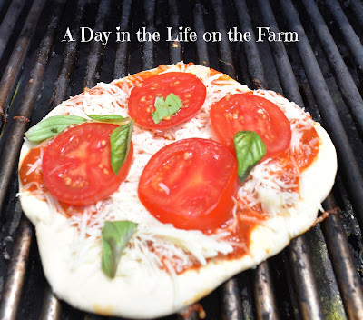 pizza with tomatoes and basil on the grill