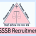 DSSSB Recruitment 2020 – Apply Online for 536 AE, Junior Clerk, Steno and Other Posts