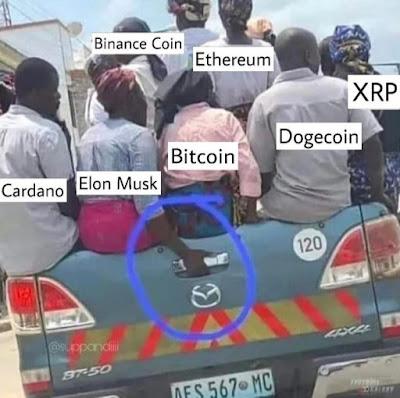 Bitcoin Crash 2021 - Elon Musk - lustige Bilder