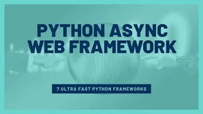 Python Async Web Framework