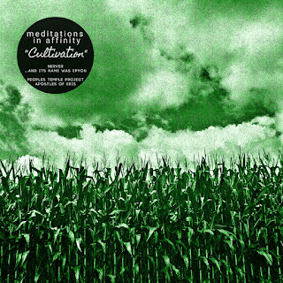 https://zegemabeachrecords.bandcamp.com/album/meditations-in-affinity-2-cultivation
