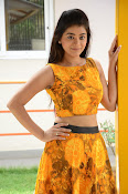 Yamini Bhaskar at Titanic movie press meet-thumbnail-1