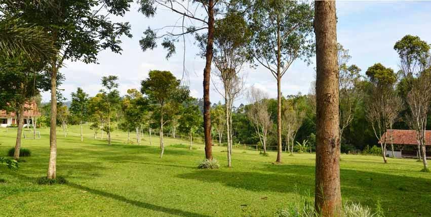 natural hill lembang bandung