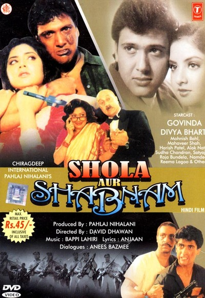 Shola Aur Shabnam 1992 Hindi WEB HDRip 480p 450mb