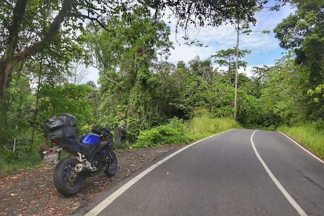 Hutan Taman Nasional Bukit Barisan Selatan (TNBBS)