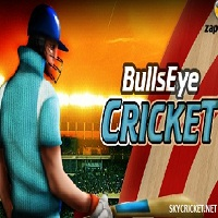 Play Bulls Eye Cricket Game