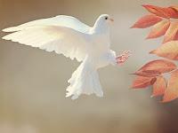 """Bahan Ajar Pendidikan Agama Katolik & Budi Pekerti Kelas 10 : """"Peranan Roh Kudus"""""""