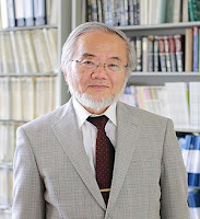 The 2016 Nobel Prize in Physiology or Medicine win Yoshinori Ohsumi for his discoveries of mechanisms for autophagy